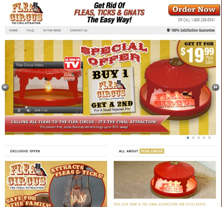 images How to Make a Flea Trap